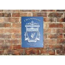 Liverpool FC Champions sandblasted mirror