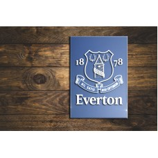 Everton FC sandblasted mirror