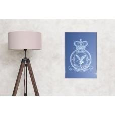 RAF 216 squadron