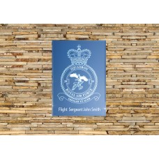 RAF 29 Squadron