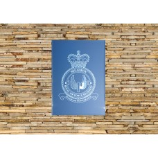 RAF 2 Regiment Squadron