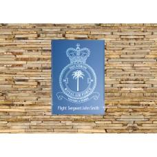 RAF 30 Squadron
