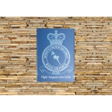 RAF Queens Colour Squadron