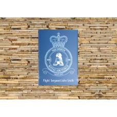 RAF 208 Squadron