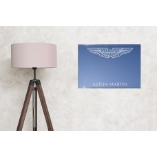 Aston Martin mirror