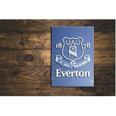 Everton FC sandblasted mirror