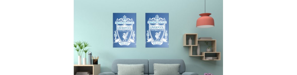 Liverpool Fc mirrors